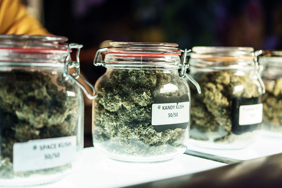 Cannabis Insurance - Cannabis Flowers in Medicinal Jars