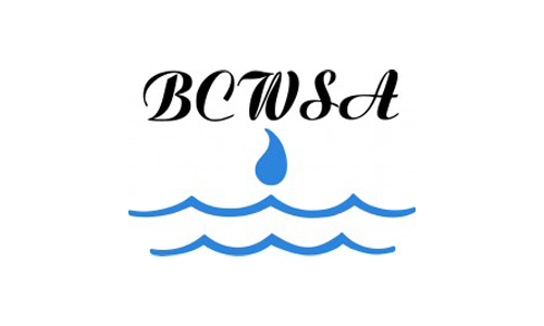 Community-BCWSA-Logo
